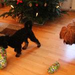 ...noch toller wurde die Bescherung an Weihnachten