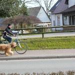 Radtour am Nachmittag