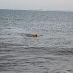 Ich bin ein echter See-Hund, in echt jetze!!