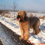 Ich liebe den Winter - jedenfalls mit Schnee, Sonne & Frost!