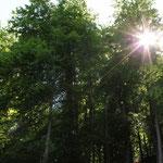 ...bei dem herrlichen Sonnenschein & 25°C