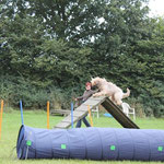 A-Wand: laaangsam & nicht von oben springen! Warum denn nicht? Macht doch Spaß!!!