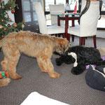 Jobedi & ich noch in Gotha (01.01.2011)