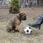 Emil, möchtest Du Fußballspielen?