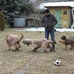 Ich will aber auch mitspielen!
