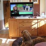 Relaxen beim TV gucken