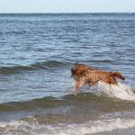 rein ins Wasser