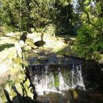Sonne, Bäume, Wasser - der Park ist einfach genial