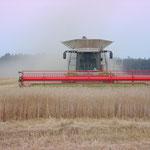 Der Niedere Fläming - Felder bis zum Horizont