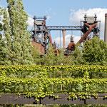 """2018-07-09 -  """"Landschaftspark Duisburg-Nord (7-47442)"""" - Mit dem Rad unterwegs in der Metropole Ruhr - Copyright by Franz Walter"""