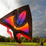 """2018-11-03 -  """"Kite (7-34852)"""" - Mit dem Rad unterwegs im Herbst - Copyright by Franz Walter"""