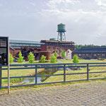 """2018-06-07 - """"Westpark Bochum (7-32343)"""" - Mit dem Rad unterwegs in der Metropole Ruhr - Copyright by Franz Walter"""