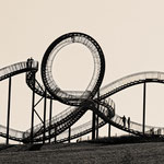 """Tiger and Turtle (7-10533) B+W"" - Copyright by Franz Walter"