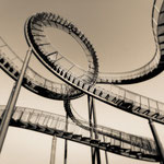 """2019-02-02 - """"Tiger and Turtle (7-10374) B+W"""" - ARISTOPRINT - Copyright by Franz Walter"""