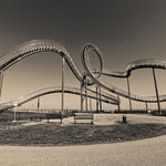"""Tiger and Turtle (7-10366) B+W"" - Copyright by Franz Walter"