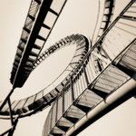 """2019-02-06 - """"Tiger and Turtle (7-10434) B+W"""" - ARISTOPRINT - Copyright by Franz Walter"""