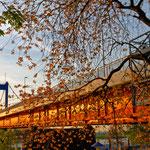 """2018-12-17 -  """"Friedrich-Ebert-Brücke Duisburg (7-39832)"""" - Route der Industriekultur - Copyright by Franz Walter"""