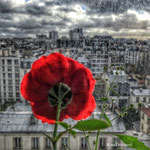 Regard sur Paris