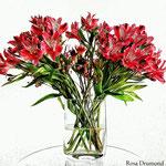 bouquet frêle
