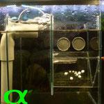 Ansicht von vorne, der Kasten wird an der Frontscheibe des Aquariums eingehängt