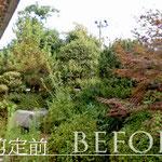 お庭の剪定(ビフォー)