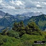 Zitterklapfen und Braunarlspitzgruppe vom dicht bewachsenen Gipfelbereich des Portlakopfes