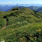 Großartige Rundsicht  vom Gipfelbereich des Portlahorns