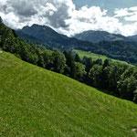 Schöne Aussicht von versteckten Alpwiesen auf die Berge des Bregenzerwalds