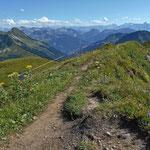 Rueckblick auf Berge des Gr. Walsertals und Raetikons. Ganz hinten links der Bildmitte Gipfel der Silveretta