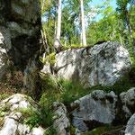 Drahtseil versichertes Wegstück im Höhlenpark Klausenstein