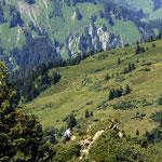 Im Abstieg vom Portlakopf eine Wegstelle, welche die Zuhilfenahme der Haende erfordert.