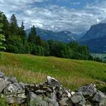 Trockenmauern grenzen die Alpwiesen auf dem Klausberg ab.