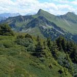 Der dicht bewachsene Gipfelbereich des Portlakopfes. Hinten Damuelser Glatthorn und Tuertschhorn.