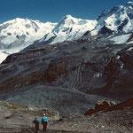 Monte Rosa, Lyskamm und Breithorn , Gorner- und Theodulgletscher vom Weg auf das Hirli