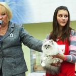 выставка 23.12.12.  5 мес   WCF ринг судья Vīja Klučniece, Latvia