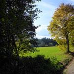 Abzweig zu den  Meronwinger Gräbern © Hartmut Hermanns