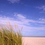 Strand von Denmark, wirklich wie in Dänemark