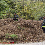 Suche nach Satellitentrümmern in einem Waldgebiet