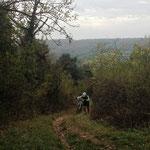 (Wander-)Anstieg nach Schernfeld