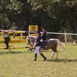 Die Jüngsten bei der Pony-Führzügelklasse