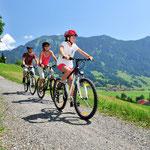 Großes gut beschildertes Radwegenetz im Allgäu