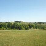Firenzeに向かう帰りの景色。緑が美しいです・・・