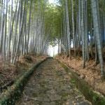 有名な石畳の坂。とても美しいです。