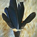 Räuchrfächer schwarzer Rabe