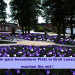 Foto Andrea Weinke-Lau, Verein Gross Laasch Flexibel e.V. - Wir pflanzen Krokusse für unsere Gemeinde