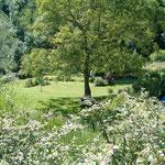 La Grange - Vue sur le jardin