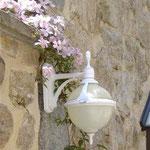 Lampe et clématites