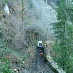 Hangsicherung Schildwald