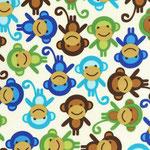 RK Urban Zoologie monkeys