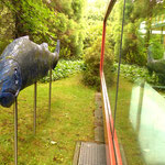 Claudia Stretz: Fisch